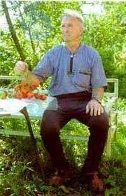 Ушаков Юрий Николаевич и кисть томата сорта Тарасенко весом 1 кг 900г (Увеличить)